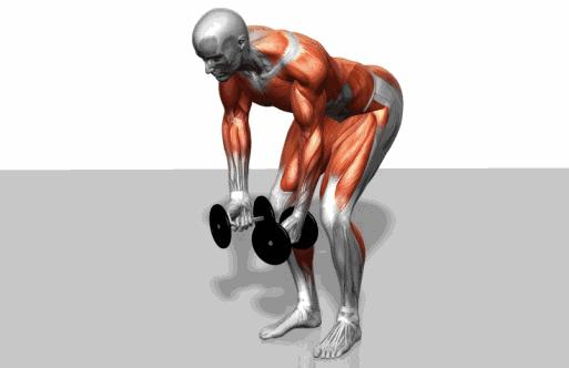 35个GIF<a href=http://www.fitnes.cn/fujidz/ target=_blank class=infotextkey>腹肌</a>训练动态图,妥妥做个肌肉男,以后就靠它了!